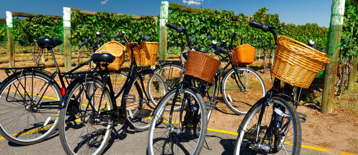 Secret Vineyards of Nice eBike Tour